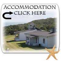 self catering accommodation